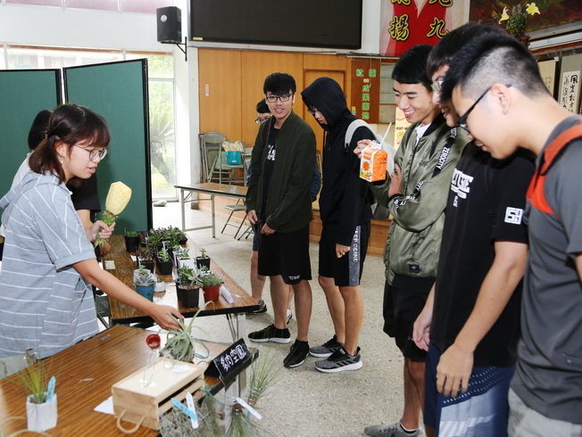 The visiting students showed a lot of interest in the small potted plants of Tillandsia.