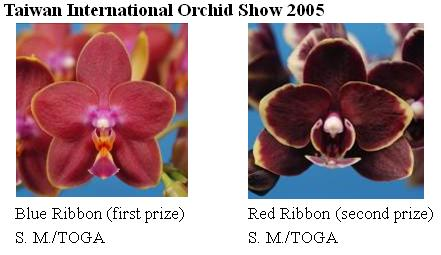 Taiwan International Orchid Show 2005