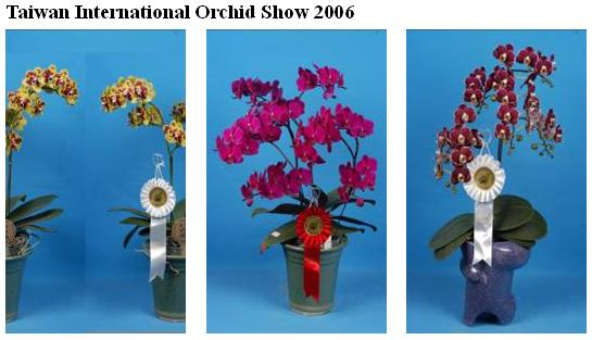 Taiwan International Orchid Show 2006