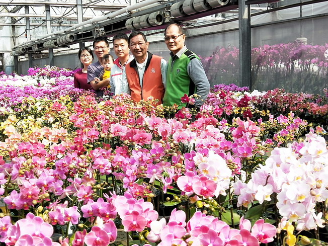 The NCYU Department of Horticultural Science – the invisible champion – plays a pivotal role in nurturing orchid professionals for the orchid industry in Taiwan. (From right to left: Shen Rong-Show, Chairman of the Department of Horticultural Science; Jian Wei-Zuo, Chairman of Yi-Shin Lotus Garden; Wang Bing-Xun, alumnus and director of Yi-Shin Lotus Garden; and Chen Jiang-Liang and his wife Kang Fang-Yu, alumni and owners of Lehe Orchid)