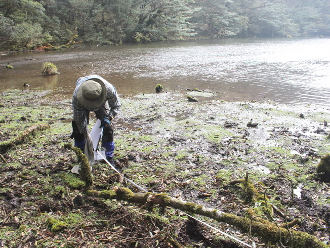 The researchers carried out an ecological investigation in the Daguei Lake Wetland.